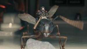 Ant-Man-Microverse-Photo-Antony-Saddle