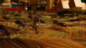 Ant-Man-Microverse-Photo-Ants-on-Carpet