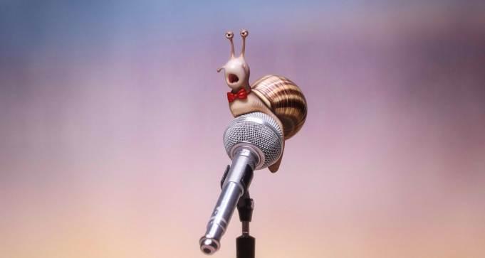 sng-snail