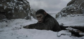 """Twentieth Century Fox's """"War for the Planet of the Apes."""""""