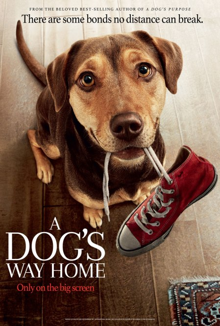 adogswayhome