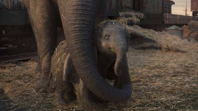 "MOTHER AND SON – In Disney's live-action reimagining of ""Dumbo,"" a circus owner purchases an expectant mother elephant in hopes that her adorable offspring will bring in the crowds. Directed by Tim Burton, ""Dumbo"" opens in U.S. theaters on March 29, 2019...© 2019 Disney Enterprises, Inc. All Rights Reserved.."