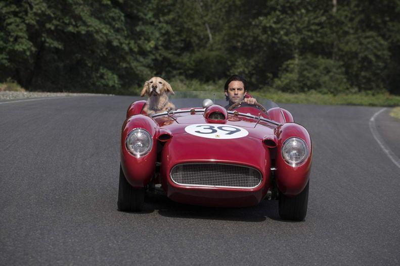 The Art of Racing in the Rain 03